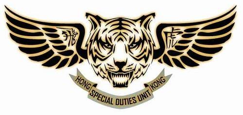 Znate li ko su Leteći tigrovi?
