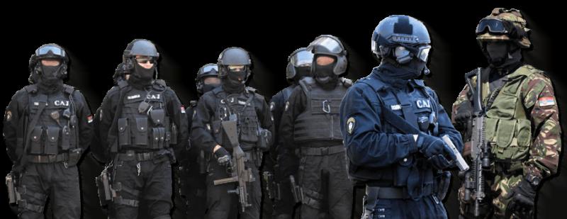 Oprema i naoružanje jedince SAJ