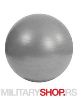 Pilates lopta 95cm MSD Gym Ball